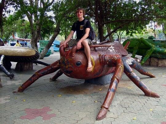 大きなゴキブリを制圧する夢