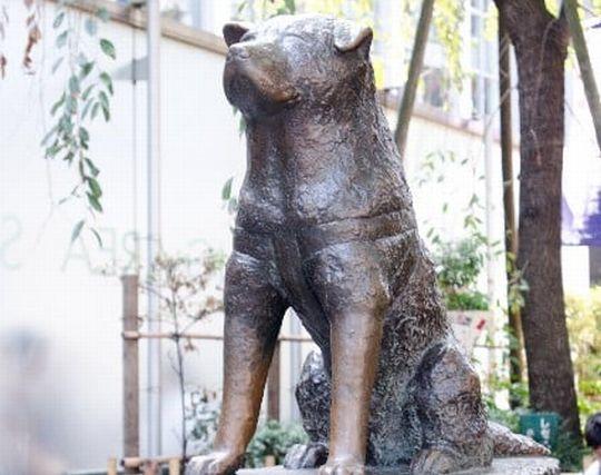 犬の銅像の夢