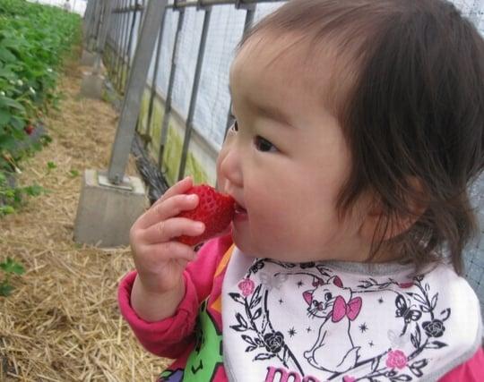新鮮な果物を食べる夢