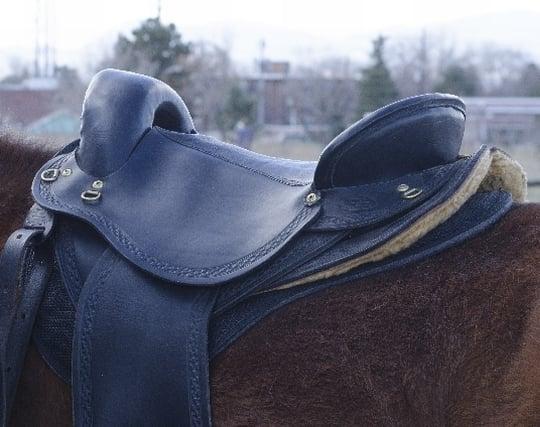 乗馬のため馬の背に鞍を置く夢