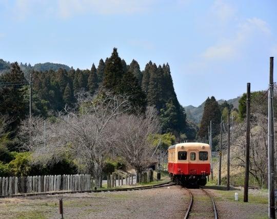 ローカル線に乗る夢