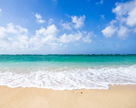 穏やかな波の夢