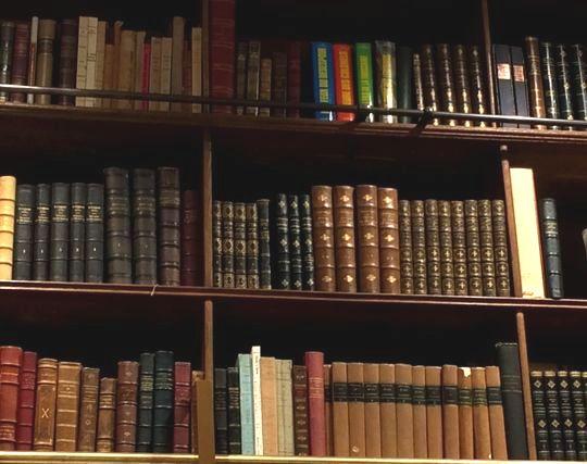特定のジャンルの本が並んだ本棚の夢