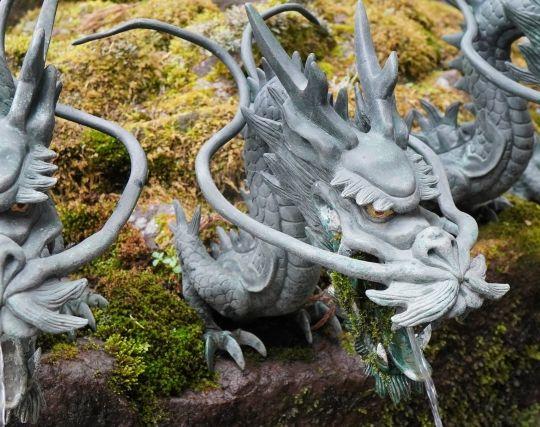 龍と喧嘩する夢