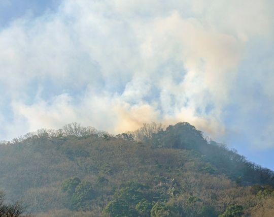 山火事が印象的な夢