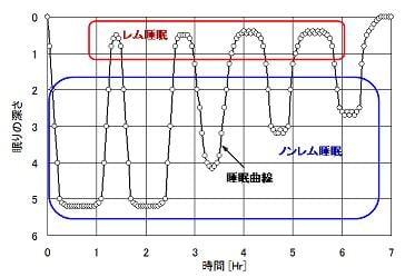 睡眠曲線・レム睡眠・ノンレム睡眠