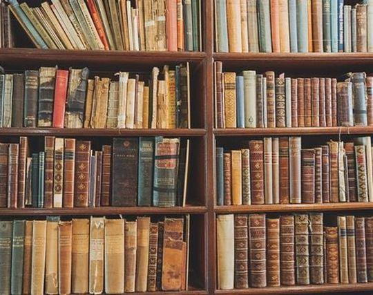 本棚に並ぶ沢山の本の夢