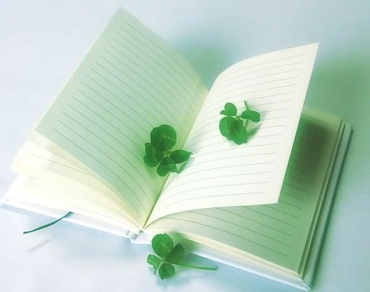 人の日記を読む夢