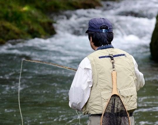 魚を釣る夢