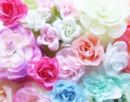 カラフルな花が咲いている夢