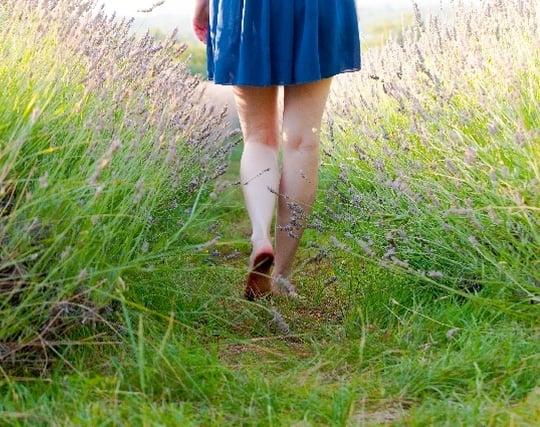 草原を裸足で歩く夢