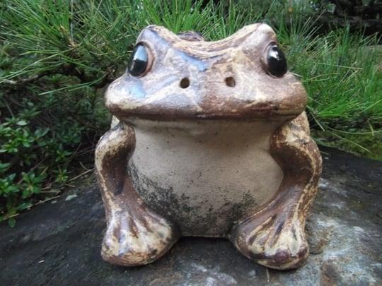 蛙の置物が印象的な夢
