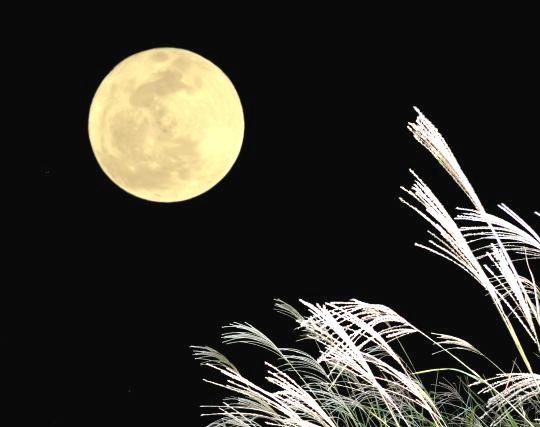 美しいと感じる満月の夢