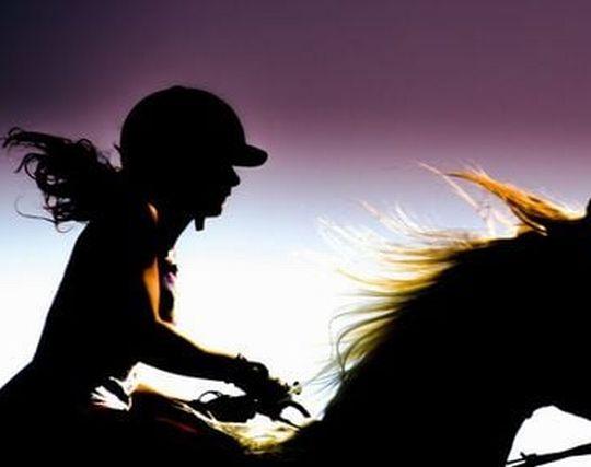 馬を乗りこなす夢