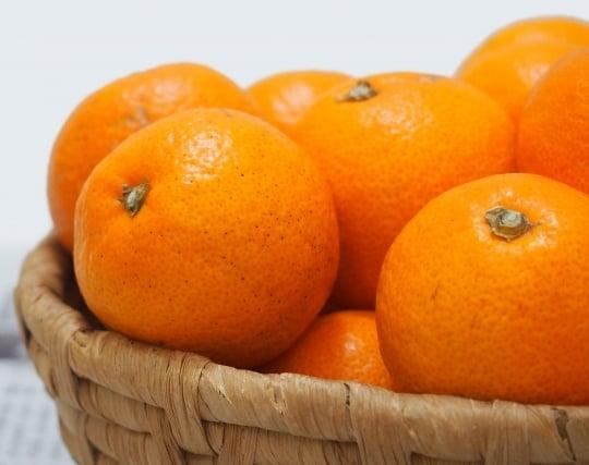 オレンジ色のミカンの夢