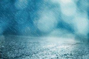 冷たい雨の夢