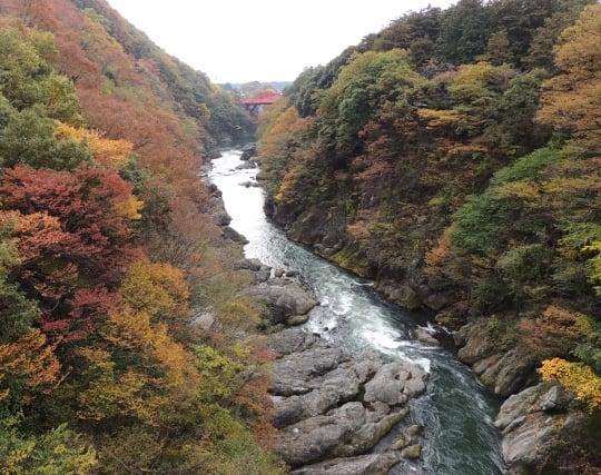 <strong>谷</strong>川の綺麗な水を飲む夢