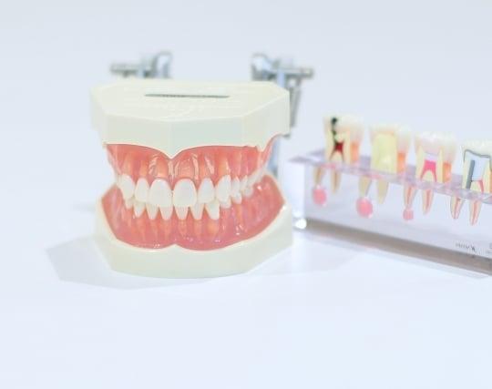 入れ歯が現れる夢