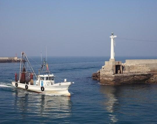 大海から防波堤の中に漁船が帰ってくる夢
