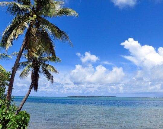 無人島に行く夢