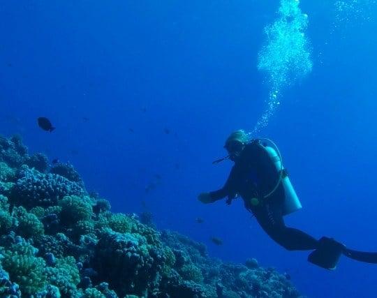 海底に潜る夢