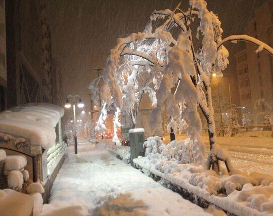 冬の夜道の夢