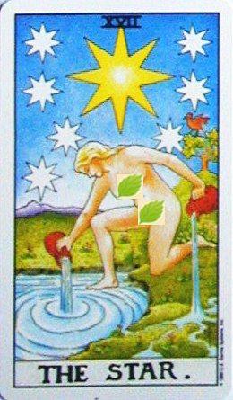 銀貨のカード:星 - The Starの正位置