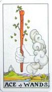 棒のスートの意味・解釈
