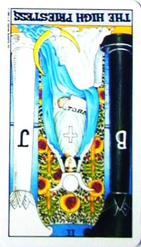 銀貨のカード:女教皇 - The HighPriestessの逆位置